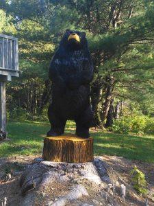6 foot bear
