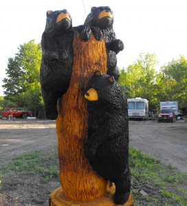 3 bears on a log