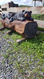 2 bears on log