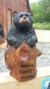 Knotty home sweet home bear