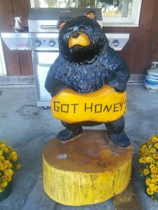 Got honey? bear