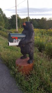 5′ mailbox bear